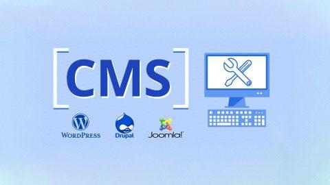 منصات نظام إدارة المحتوى سهلة النفاذ